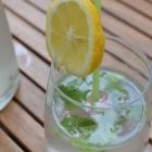 Boisson rafraîchissante menthe, citron et sirop de fleurs de sureau
