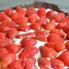 Tarte aux fraises et chantilly au mascarpone